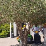 বিদায় জেরুজালেম বিদায় ইসরায়েল বিদায় প্যালেস্টাইন